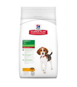 Science Plan Puppy Medium Chicken - Puppy food