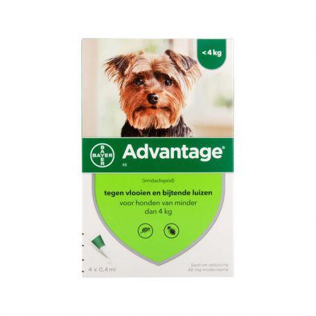 Advantage Dog - Anti-flea pipettes