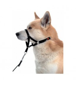 Halti - no pull headcollar for dogs