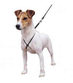 Lupi - No-pull dog harness