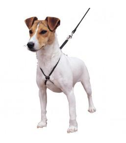 Lupi - No-pull dog harness