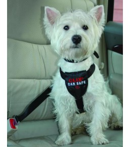 Clix - Car Safe dog seatbelt