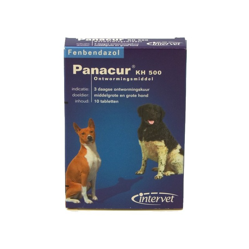 Panacur™ - Dog and cat dewormer - MSD / Direct-Vet