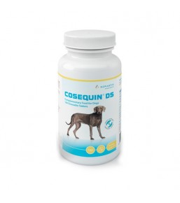Cosequin DS for dogs